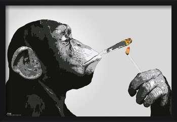 Πλαισιωμένη αφίσα Steez - Monkey Smoking